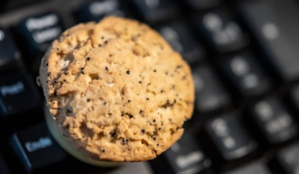 FLoC: la alternativa de Google a las cookies